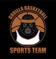 gorilla basketball vector image vector image