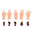 hand count flat finger and number isolated vector image vector image