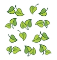 leafs isolated vector image vector image