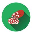 Salami icon vector image