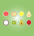 set with fruit icons vector image vector image