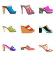 set with women shoes vector image vector image