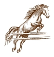 Wild horse jumping high over barrier vector image vector image