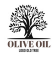 black olive tree on white background with text vector image vector image