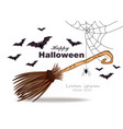 halloween card with broomstick bats and spider vector image