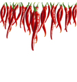 hot pepper vector image vector image