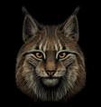 lynx realistic hand-drawn color portrait vector image vector image
