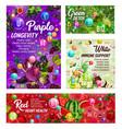 rainbow diet healthy nutrition vitamins vector image vector image