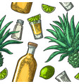 seamless pattern of bottle glass tequila salt vector image vector image