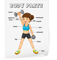 Body Parts Poster vector image vector image