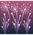 fireworks violet vector image