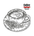 hand drawn coffee cup isolated on white vector image vector image