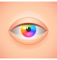 Human eye with rainbow iris background vector image