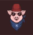 pig head bandana vector image