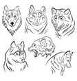 set portraits wolves collection wolf vector image vector image
