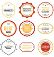 set retro vintage badges and labels vector image