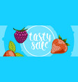 summer sale web banner with berries vector image vector image