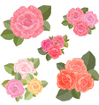 collection vintage bouquets of roses for your vector image