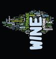 best wine storage practices text background word vector image vector image