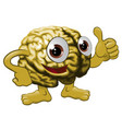 brain cartoon character vector image