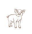 hand drawn cartoon sketch of funny piggy 2019 new vector image vector image