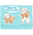 how to safely lift and carry large dog vector image