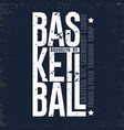 new york baketball t-shirt sport typography vector image vector image