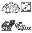 color vintage aquapark emblems vector image vector image