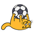 cute orange cat is playing with a soccer ball vector image vector image