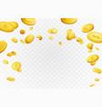 fortune golden dollar coins flying reward vector image