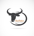 image of an buffalo design vector image vector image