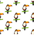 pattern with tucan vector image vector image