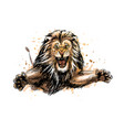 portrait a jumping lion from a splash of vector image vector image