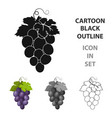 bunch of wine grapes icon in cartoon style vector image vector image
