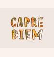carpe diem latin phrase written with decorative vector image vector image