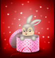 cartoon bunny in a gift box vector image