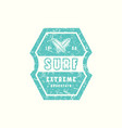 emblem of surfing club vector image