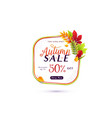 fashion autumn sale banner vector image vector image