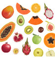 fresh juicy fruit collection vector image