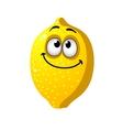 Fun cartoon lemon fruit