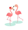 couple pink flamingo vector image vector image