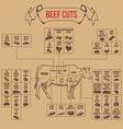 Vintage butcher cuts of beef diagram vector image vector image