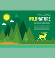 wild nature design template deer in forest vector image