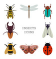 insects icons color set vector image