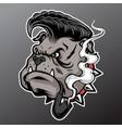 bulldog head mascot pipe smoking vector image vector image
