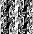 Seamless pattern of zebras vector image vector image