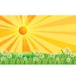 Sunshine Field vector image vector image