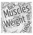 Weight Loss and Back Pain Word Cloud Concept vector image vector image
