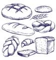 bakery set hand drawn llustration sketch vector image