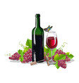 a bottle of wine with bunches of grapes vector image vector image